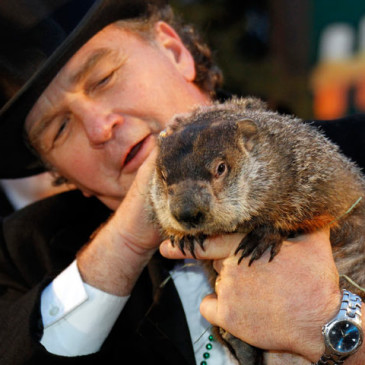 Groundhog Day and The Unpredictability of Life