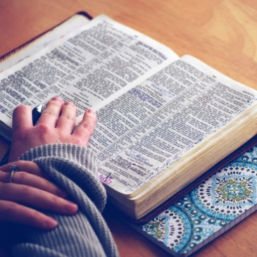 How to Read Your Bible: For Beginners
