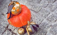 Using-the-Halloween-Season-to-Teach-Life-Lessons