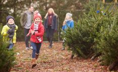 7-Holiday-Traditions-to-Start-With-Your-Family