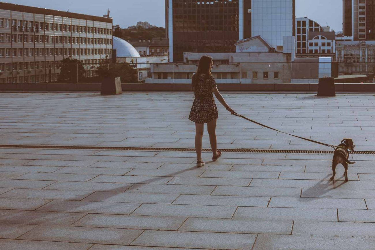 What It Really Means When an Introvert Backs Away