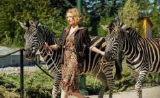 Why-We'll-Be-in-Line-to-See-The-Zookeeper's-Wife