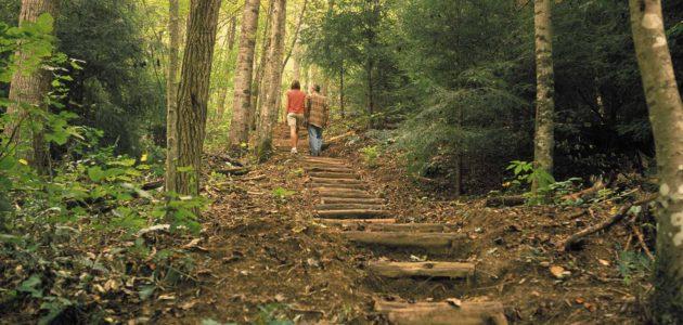 Bear Lake Hiking Trail